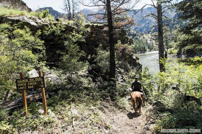 taking-a-bear-in-the-idaho-wilds-salmon-river-trail