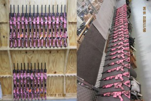 Daniel Defense's Pink AR Rifle