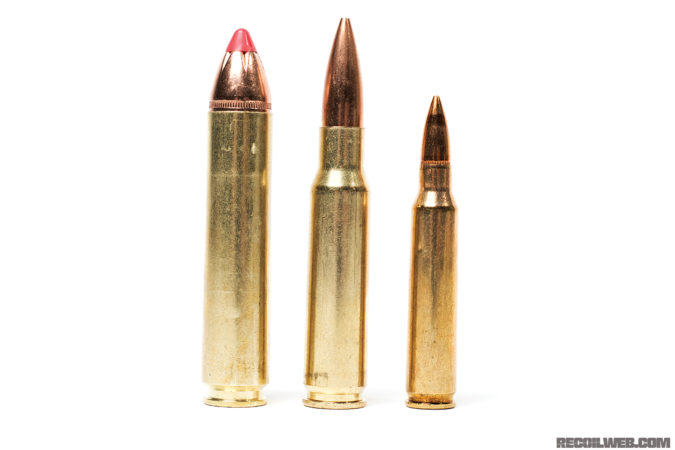 From left to right: .45-70 Auto, .308, and .223.